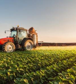 Nông nghiệp hữu cơ công nghệ cao